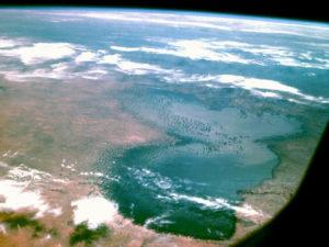 Spirulina - Čadské jezero
